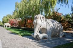 Statua dell'elefante di inginocchiamento su Ming Dynesty Tomb antico immagine stock libera da diritti