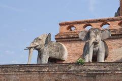 Statua dell'elefante a Wat Chedi Luang, Chiang Mai immagini stock libere da diritti