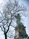 Statua della libertà, NYC, U.S.A. Immagini Stock Libere da Diritti