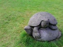 Statua della tartaruga Fotografie Stock Libere da Diritti