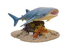 Statua dello squalo balena per la campagna circa il percorso di ritaglio di cattura del fishwith immagine stock libera da diritti