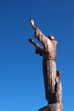 Statua dello St Francis sulla montagna dell'agrifoglio Fotografia Stock