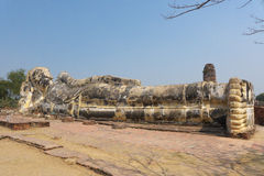 Statua di Buddha in ayuddhaya Tailandia Immagine Stock
