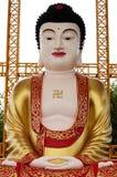 Statua di Buddha del gigante con stile cinese Fotografia Stock Libera da Diritti