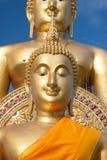 Statua di Buddha dell'oro in tempio tailandese con il chiaro cielo WAT MUANG, Ang Thong, TAILANDIA Fotografia Stock