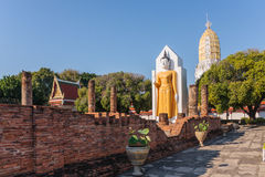 Statua di Buddha dentro Wat Phrasimahathat Fotografia Stock