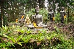 Statua di Buddha in foresta Fotografia Stock
