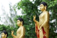 Statua di Buddha nella posizione diritta dorata immagini stock libere da diritti