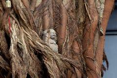 Statua di Buddha in un albero immagini stock