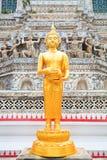 Statua di Buddha in Wat Arun Thailand fotografia stock libera da diritti