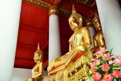 Statua di immagine di Buddha dell'oro al tempio Fotografia Stock