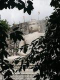 Statua di Lord Buddha nella città di eredità nello Sri Lanka Immagini Stock Libere da Diritti