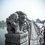 Statua di pietra antica del leone Fotografie Stock