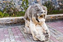 Statua di pietra del leone Fotografia Stock