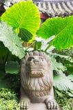 Statua di pietra del leone con le grandi foglie nei precedenti Immagine Stock Libera da Diritti
