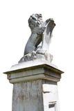 Statua di pietra del leone isolata Immagine Stock