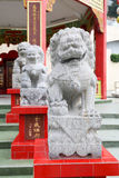 Statua di pietra del leone in tempio della baia di rifiuto Fotografia Stock