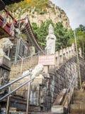 Statua di pietra di Gwanseeum-bosal al tempio di Sanbangsa Inoltre noto Fotografie Stock Libere da Diritti