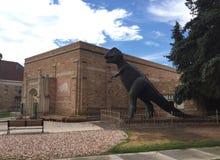 Statua di Rex di tirannosauro Fotografia Stock