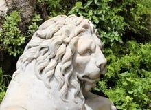 Statua di un leone, la testa, marmo bianco Fotografia Stock Libera da Diritti