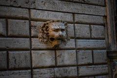 Statua di un leone su una parete Immagini Stock Libere da Diritti