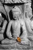 Statua di una divinità di seduta con la farfalla Fotografia Stock