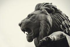 Statua di una museruola del leone nel profilo immagine stock