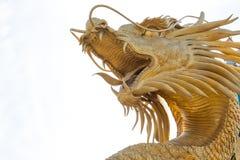 Statua dorata cinese del drago nei precedenti di cielo blu Immagini Stock