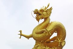 Statua dorata del drago Fotografie Stock