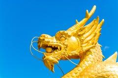 Statua dorata potente del drago Immagine Stock Libera da Diritti