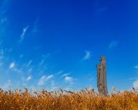 Statua e canna di vergine Maria Fotografie Stock