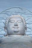 Statua grassa del Buddha Fotografia Stock Libera da Diritti