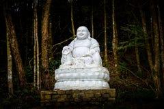 Statua grassa del Buddha Fotografie Stock