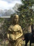 Statua graziosa dell'oro fotografia stock libera da diritti