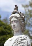 Statua i ptak Fotografia Stock