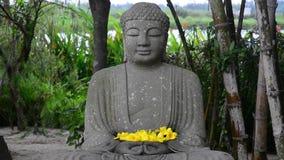 Statua kamienny Buddha w ogródzie zdjęcie wideo