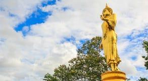 Statua levantesi in piedi del Buddha Immagini Stock Libere da Diritti