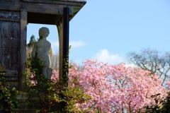 Statua Marmoreal davanti ad un albero di fioritura in primavera fotografie stock libere da diritti