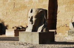 Statua na zewn?trz g??wnego wej?cia ?wi?tynia Luxor, Egipt zdjęcie stock