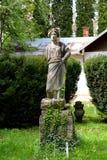 Statua nel giardino botanico a Cluj Napoca, la Transilvania Immagini Stock Libere da Diritti