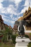 Statua nera dell'elefante in Wat Saen Muang Ma Luang di Chiang Mai immagini stock libere da diritti