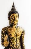 Statua nera di Buddha coperta di piccoli piatti di oro isolati su W Immagini Stock