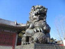 Statua Pechino del leone Immagini Stock Libere da Diritti