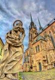 Statua przy katedrą święty Peter i Paul w Brno, republika czech obrazy royalty free