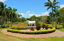 Statua Romagnola byk w Rockhampton, Australia Zdjęcia Royalty Free