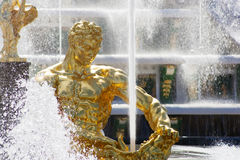 Statua Samson w Peterhof Fotografia Royalty Free