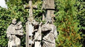 Statua w cmentarzu na drzewach zdjęcie wideo