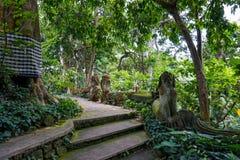 Statua w Ubud ma?py lesie zakrywaj?cym mech, Bali wyspa, Indonezja zdjęcia royalty free