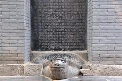 Statuary histórico chinês, monumento na tartaruga fotografia de stock