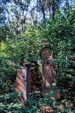 Statuaryczny w Żydowskim cmentarzu obraz royalty free